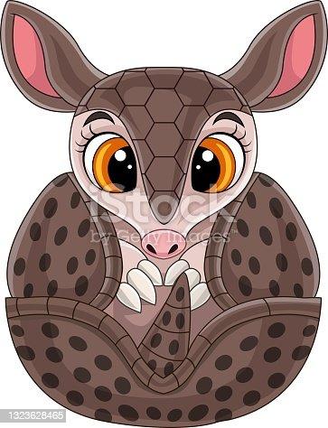 istock Cartoon cute baby armadillo rolled up 1323628465