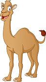 Cartoon cute camel. Vector illustration of funny happy animal.