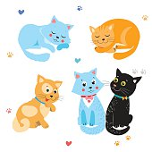 Cartoon Cute Cats Vector. Set Of Various Cute Cats.