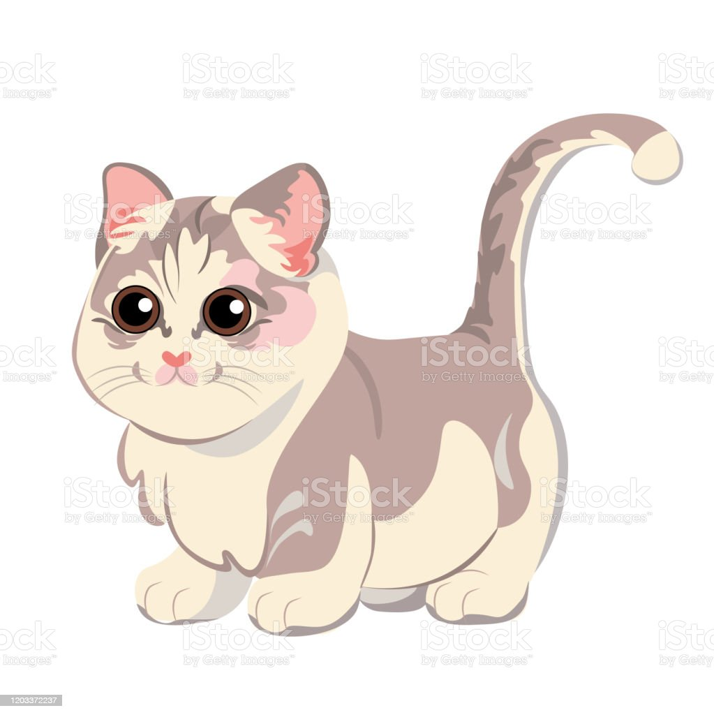 Vetores De Desenho Animado Fofo Ilustracao De Gato Fofo Isolado E