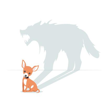 Cartoon cute little dog having horrible beast shadow isolated on white background