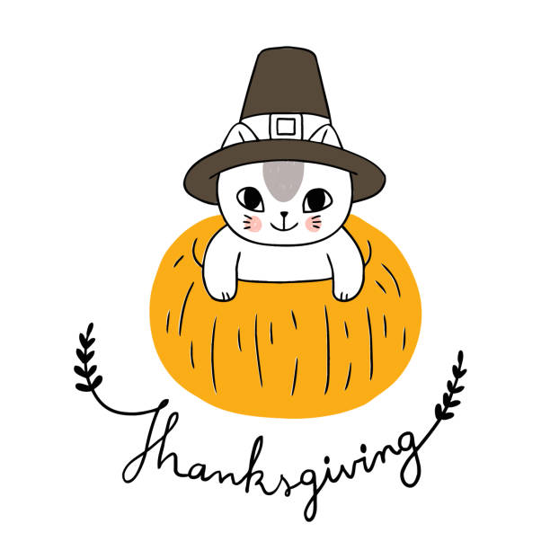 Cartoon cute thanksgiving cat and pumpkin vector. Cartoon cute thanksgiving cat and pumpkin vector. thanksgiving pets stock illustrations