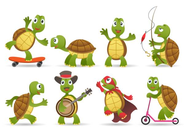 Cartoon cute tortoise set Cartoon cute tortoise set. Smiling characters of nature, green animals of wildlife, vector illustration caricature of happy funny tortoises in comic poses isolated on white background turtle stock illustrations