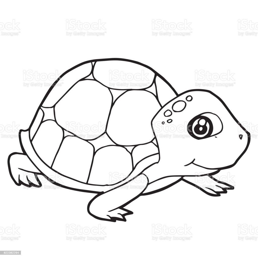 Sevimli Kaplumbaga Boyama Sayfasi Vektor Cizim Karikatur Stok