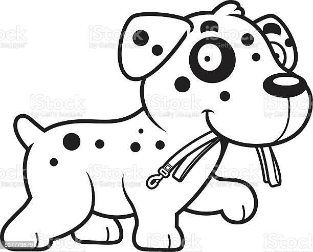 Cartoon dalmatian leash vector id527779879?b=1&k=6&m=527779879&s=612x612&h=bxbte1vepwtjwc nxfnuw0ygmbvpi9 f903fgvysve0=