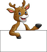 Vector illustration of Cartoon deer holding blank sign presenting