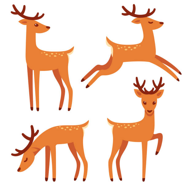 Cartoon deer set vector art illustration
