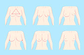 cartoon different chest shape on the blue background