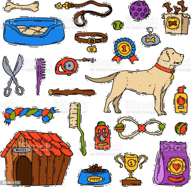 Cartoon dog accessory grooming canine animal pet toy equipment set vector id863624100?b=1&k=6&m=863624100&s=612x612&h=dvcpeqypyigjyralfoscyiyappkuzgawoctyxwmqbt4=