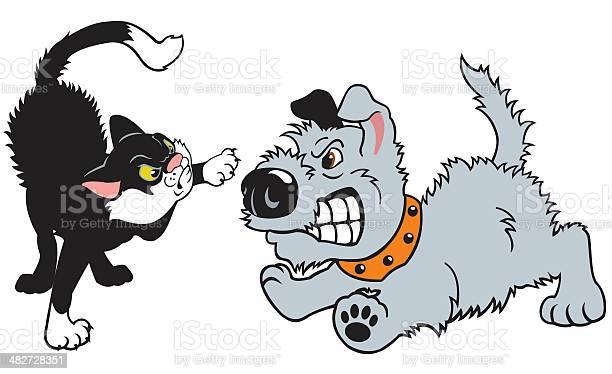 Cartoon dog and cat fighting vector id482728351?b=1&k=6&m=482728351&s=612x612&h=oy fmgp h4h4i8g9bd6omqohhbn9sztlfdswv9a0ebq=