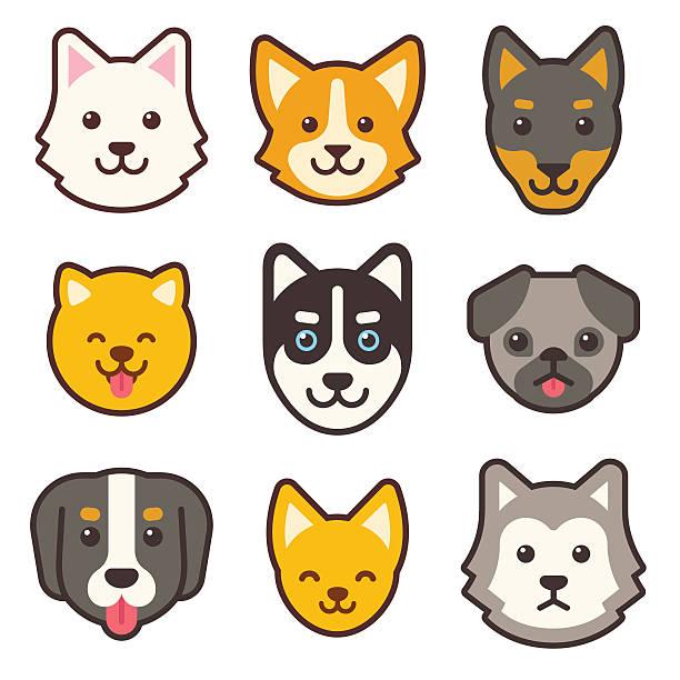 cartoon hund gesichter satz - schoßhunde stock-grafiken, -clipart, -cartoons und -symbole