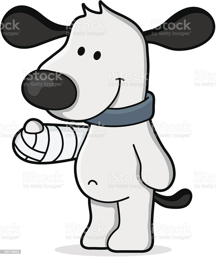 cartoon dog in a plaster bandage / at the veterinarian royalty-free stock vector art