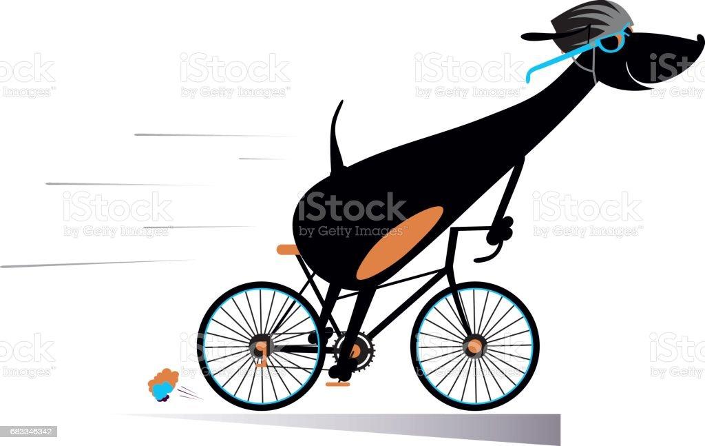 Cartoon dog rides a bike isolated vector art illustration