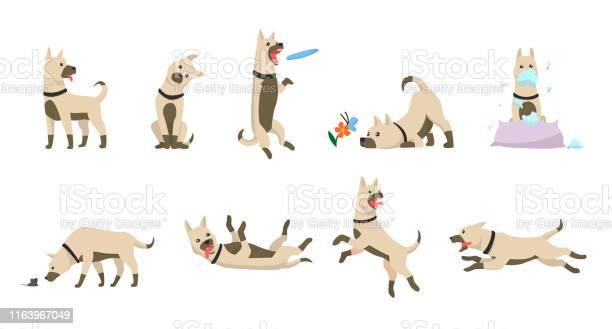 Cartoon dog set dogs tricks icons and action training digging dirt vector id1163967049?b=1&k=6&m=1163967049&s=612x612&h=kuwpsbqnpltzusfcrcsphgyp sgth0xgbgsz6eq9sda=