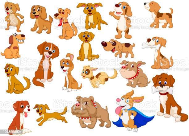 Cartoon dogs collection vector id1018555524?b=1&k=6&m=1018555524&s=612x612&h=scryyrly5ib4rx9aqvkrdiasr7pgi6no jlm7mc9vae=