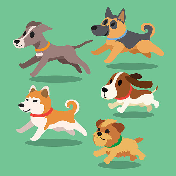 Royalty Free Dogs Running Clip Art, Vector Images ...