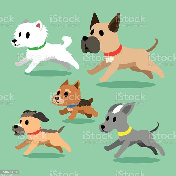 Cartoon dogs running vector id540761192?b=1&k=6&m=540761192&s=612x612&h=jyugd6eytslbl956j lb1idbxgius6a3a5cyf5hzn2m=