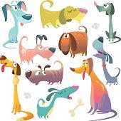 Cartoon dogs set. Vector illustrations of dogs icons.  Retriever, dachshund, terrier,pitbull, spaniel, bulldog, basset hound, afghan hound