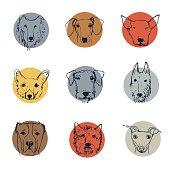 cartoon dogs