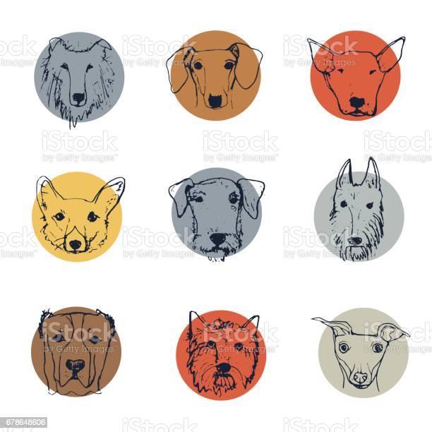 Cartoon dogs vector id678648606?b=1&k=6&m=678648606&s=612x612&h=anhrs ft06mxecpi69my9lxyjy498b35zwm4 22dnmk=