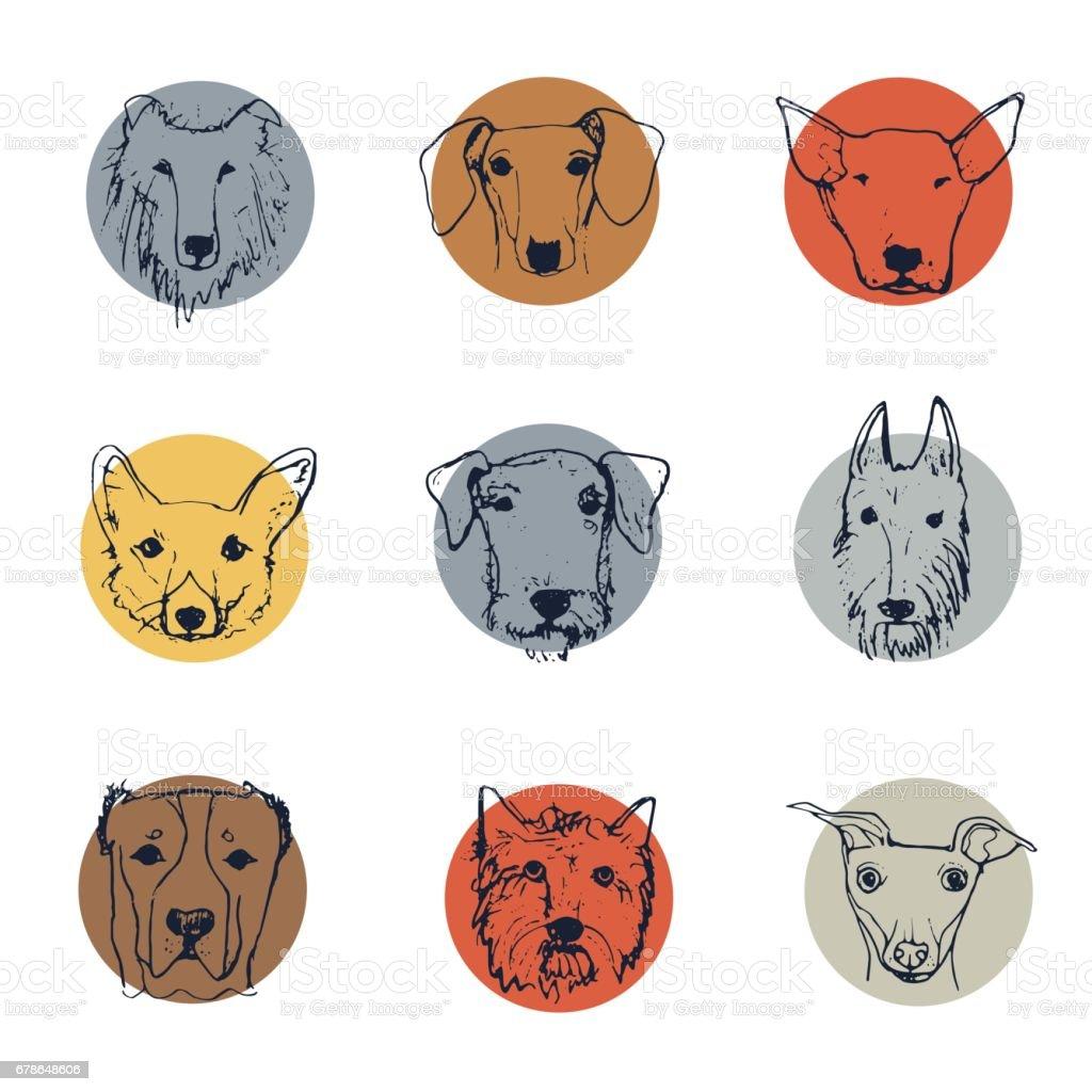 cartoon Hunde – Vektorgrafik