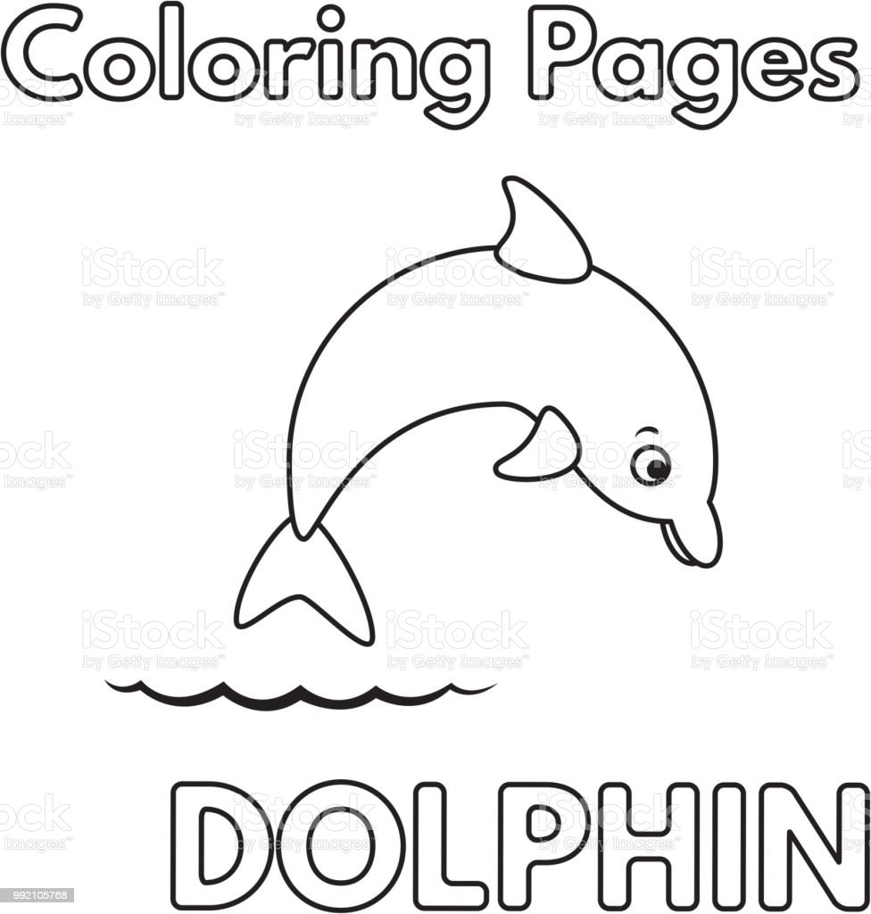 Cartoon Dolphin Coloring Book Stock Vector Art & More Images ...