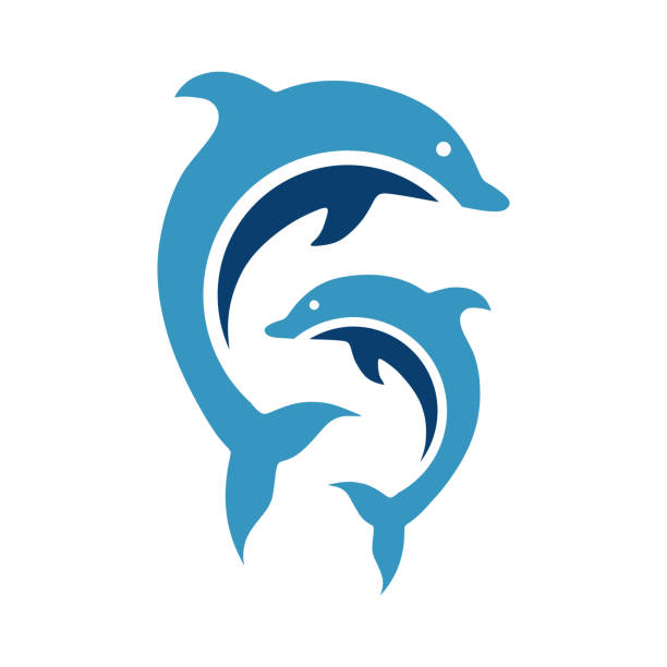 cartoon dolphins vector template cartoon dolphins vector template dolphin stock illustrations