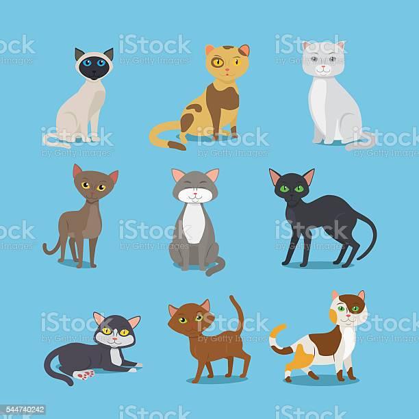 Cartoon domestic cat set vector id544740242?b=1&k=6&m=544740242&s=612x612&h=jfcmtrn4jvgja2pukg8nq7dsskyj6dlesczvsiimtye=