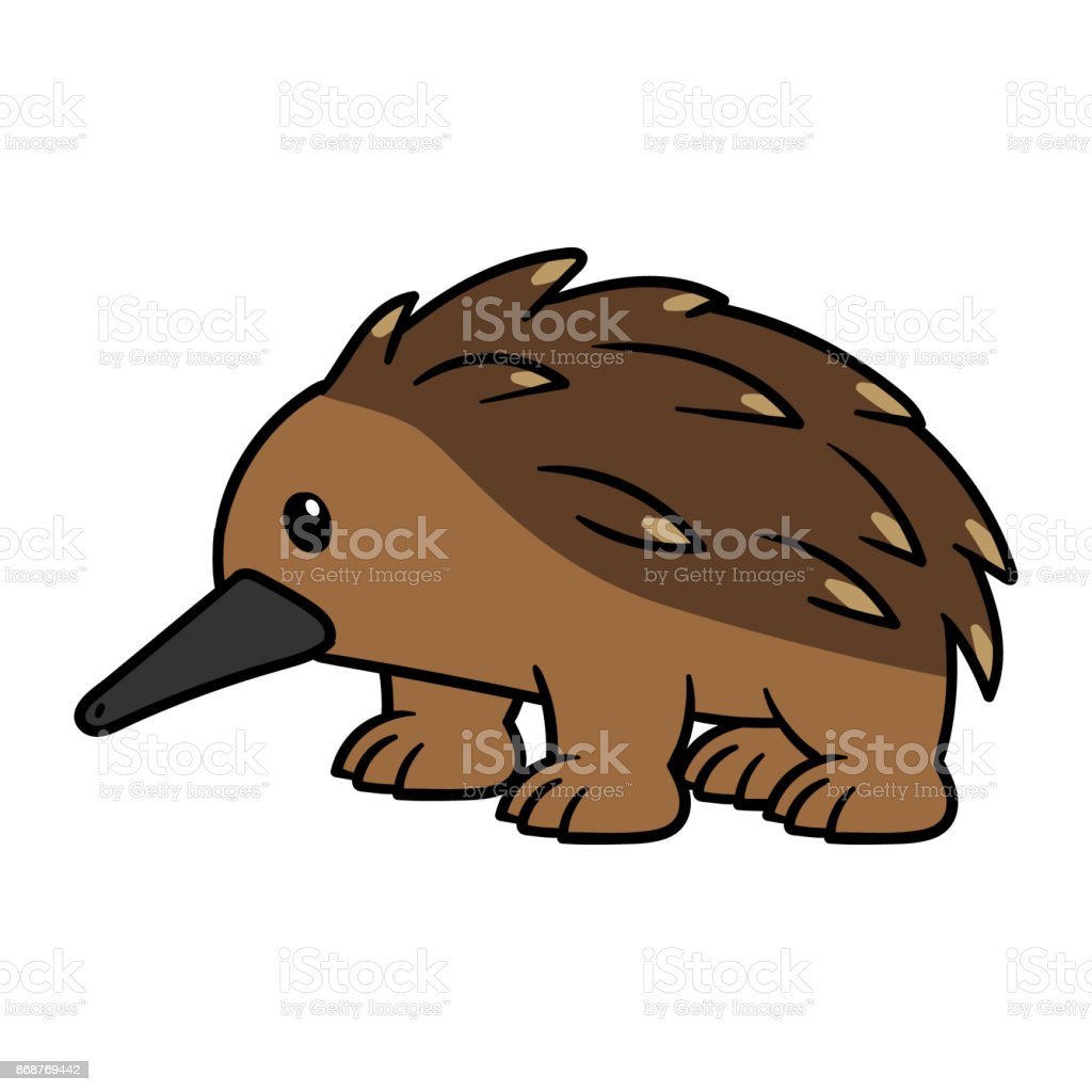 royalty free echidna clip art vector images illustrations istock rh istockphoto com  anteater clipart black and white
