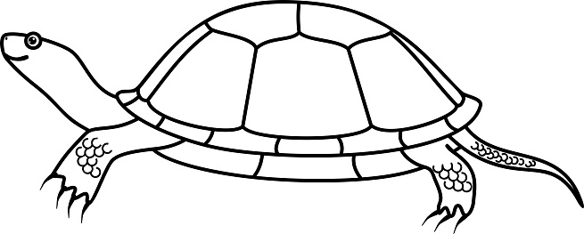 Cartoon European Pond Turtle Coloring Page Stock