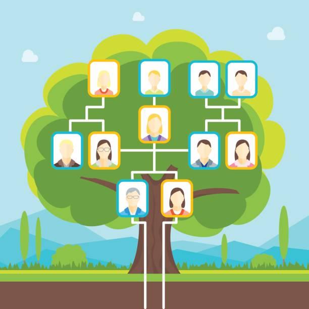 cartoon-stammbaum. vektor - stammbäume stock-grafiken, -clipart, -cartoons und -symbole