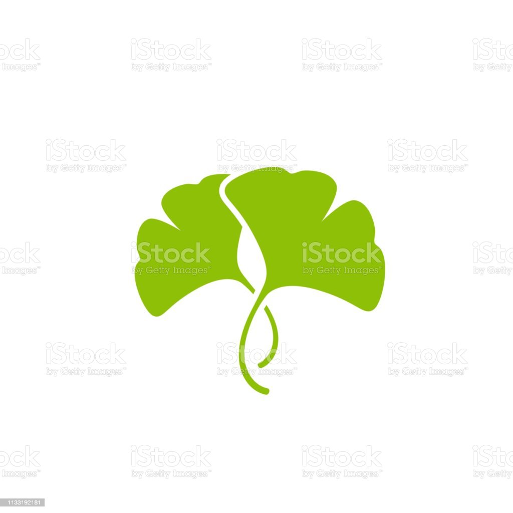 Ginkgo Leaves Clip Art