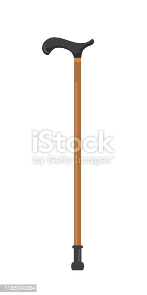 istock Cartoon flat pair of quad cane isolated on white 1185240264