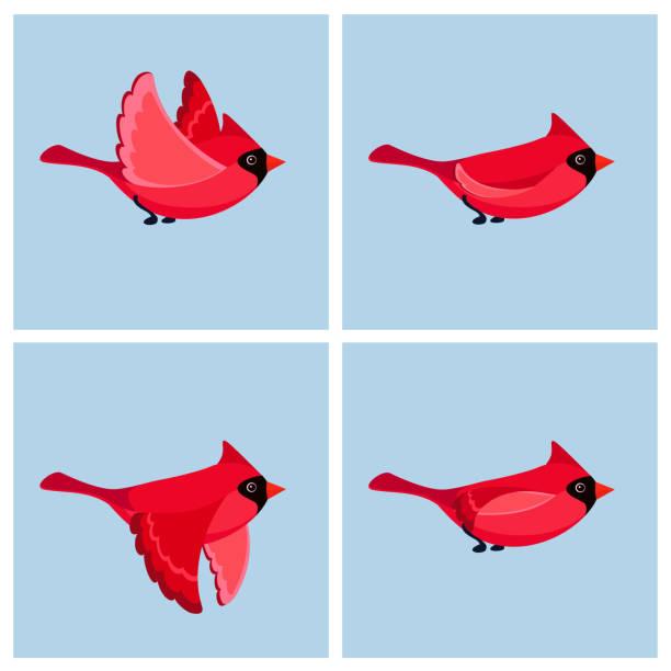卡通飛行紅衣主教鳥 (男) 動畫精靈片 - gif 幅插畫檔、美工圖案、卡通及圖標