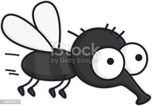 vector illustration of a cartoon fly on white background
