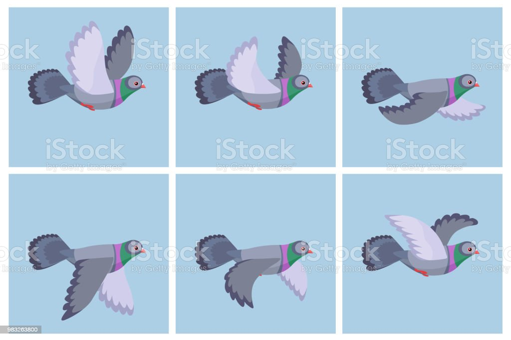 Cartoon Flying Pigeon Animation Sprite Sheet Stock Vector Art More