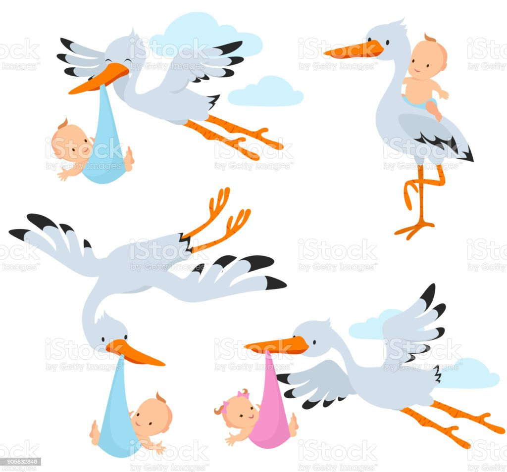 Cartoon Flying Storks And Stork Birds Carrying Baby Vector Set Stock Illustration Download Image Now Istock