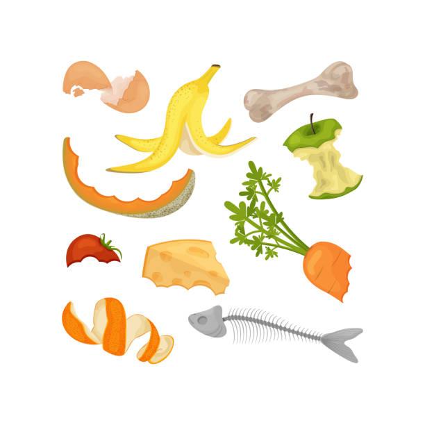 ilustraciones, imágenes clip art, dibujos animados e iconos de stock de colección de compost de alimentos de dibujos animados - leftovers