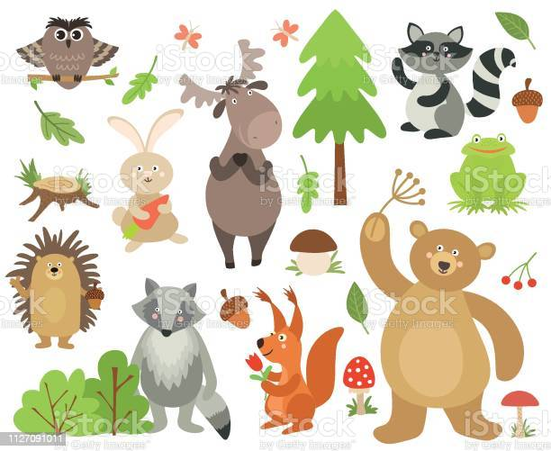 Cartoon forest animals elk owl hare raccoon squirrel bear hedgehog vector id1127091011?b=1&k=6&m=1127091011&s=612x612&h=sacbx3hzgpj3ypd5dyhdntouxmmssunfumy0tk16jg4=