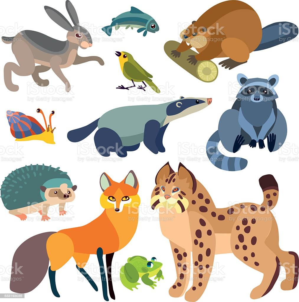 cartoon forest animals set vector art illustration