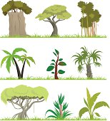 "Vector Illustration ""Cartoon forest (Cartoon forest (Jungle))"""
