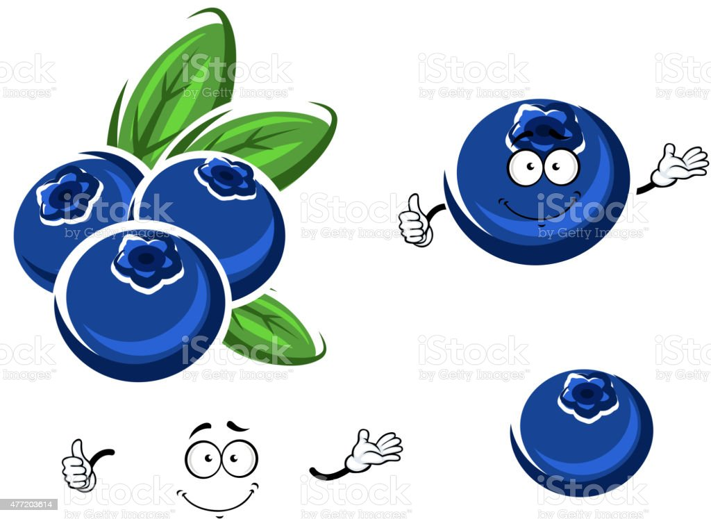 Cartoon fresh blueberry fruits on white vector art illustration