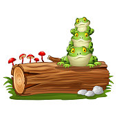 Vector illustration of Cartoon frog stacked on tree log