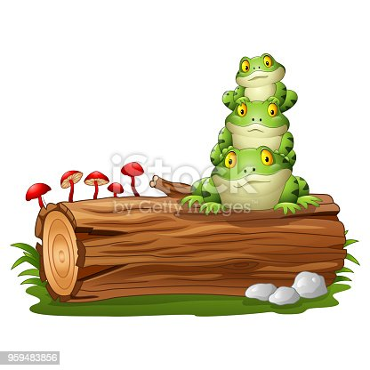 613 Frog On Log Stock Photos, Pictures & Royalty-Free Images - iStock