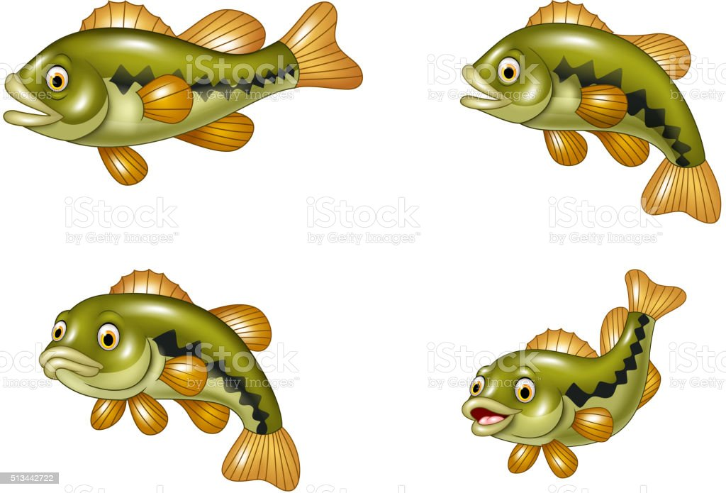 Cartoon funny bass fish collection isolated on white background vector art illustration