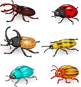 Illustration of Cartoon funny beetle collection