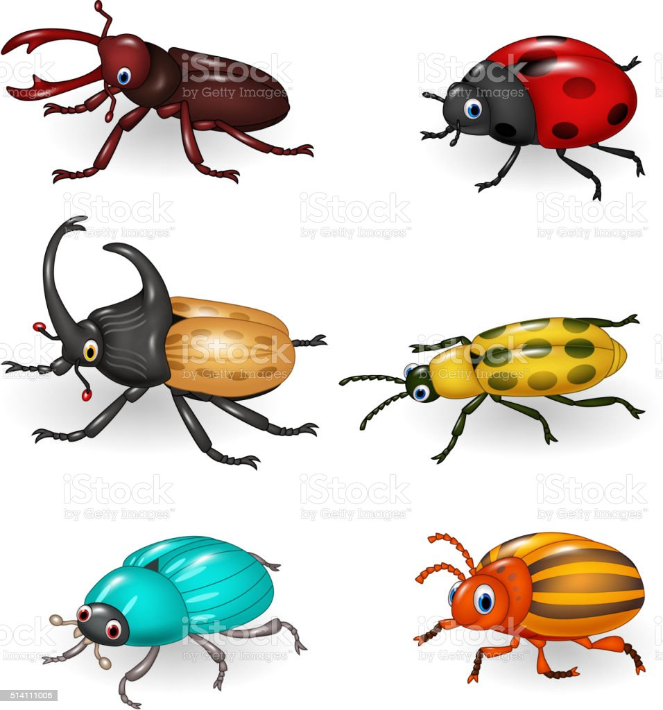 Cartoon funny beetle collection vector art illustration