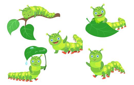 Cartoon funny caterpillar set