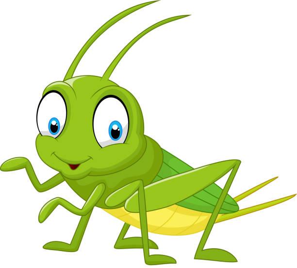 Best Grasshopper Illustrations, Royalty-Free Vector ...