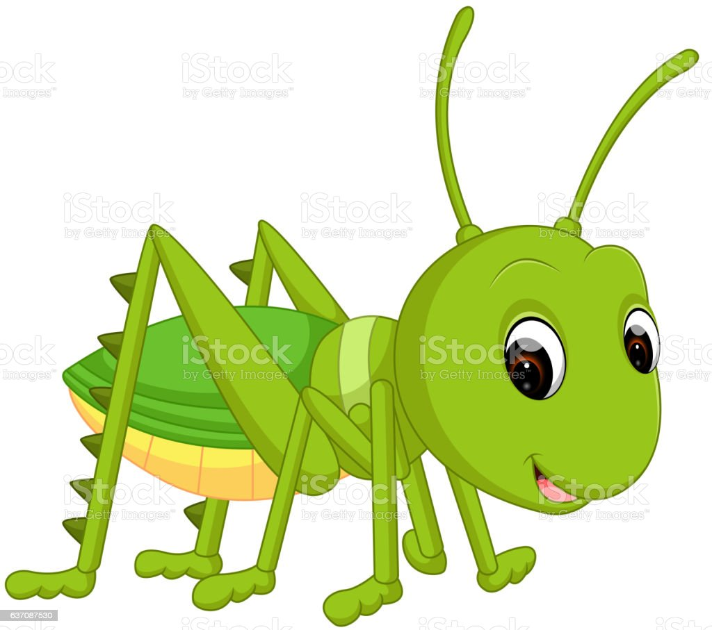 royalty free cricket animal cartoon clip art vector images rh istockphoto com insect clipart animated insect clip art images